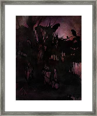 Lost Sparrow Framed Print by Rachel Christine Nowicki