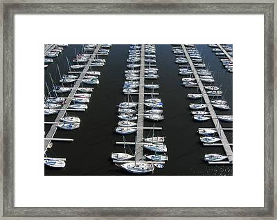 Lots Of Yachts Framed Print by Rob Huntley