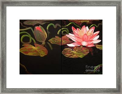 Lotus Bud To Bloom Framed Print