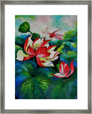 Lotus Dragon Fly A Framed Print by Min Wang