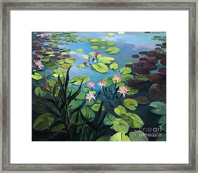 Lotus Flowers  Framed Print by Kiril Stanchev