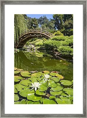 Lotus Garden - Japanese Garden At The Huntington Library. Framed Print by Jamie Pham