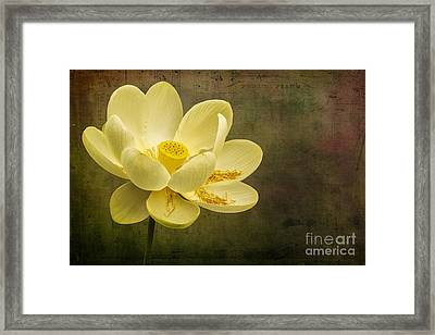 Framed Print featuring the photograph Lotus Notes by Vicki DeVico