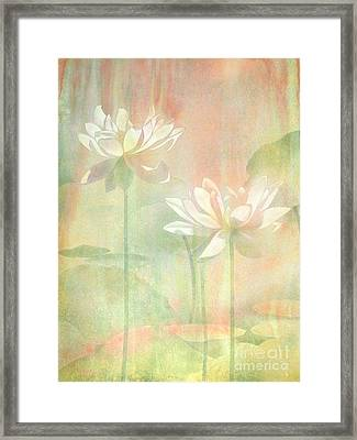 Lotus Framed Print by Robert Hooper