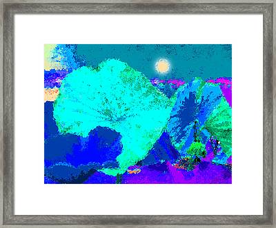 Lotus Sleeping Framed Print by John Lautermilch
