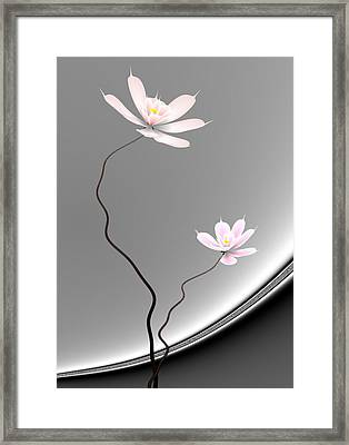 Lotus Twins Framed Print by GuoJun Pan