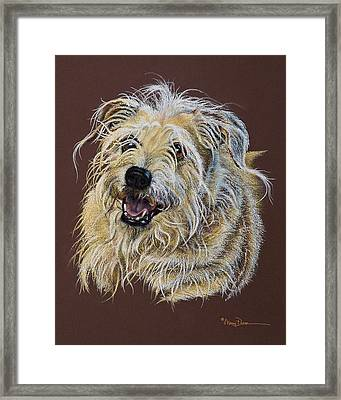 Louie Louie Framed Print