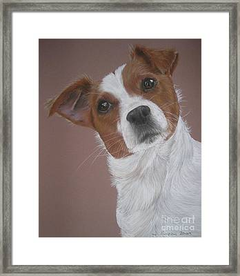 Louis Framed Print by Joanne Simpson