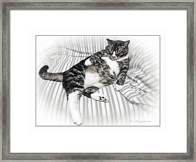 Louis Relaxed Framed Print by Joan  Minchak