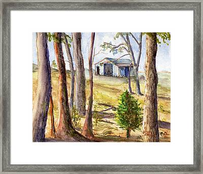 Louisiana Barn Through The Trees Framed Print