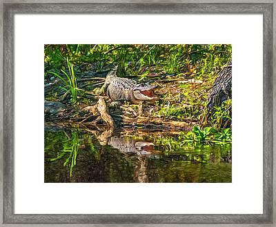 Louisiana Bayou 2 - Paint Framed Print by Steve Harrington