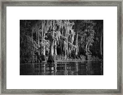 Louisiana Bayou Framed Print by Mountain Dreams