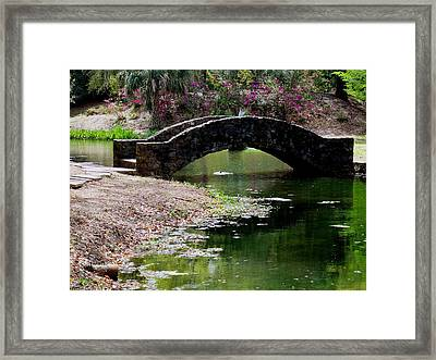 Louisiana Beauty Framed Print by Robin Lewis