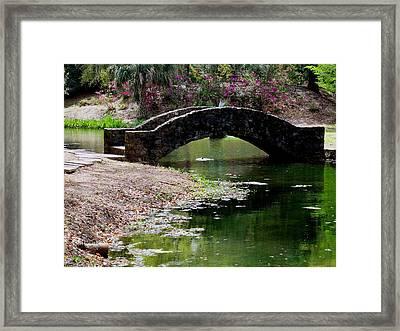 Louisiana Beauty Framed Print