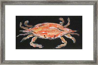 Louisiana Crab Framed Print by Katie Spicuzza
