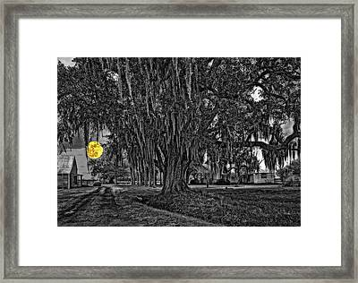 Louisiana Moon Rising Monochrome 2 Framed Print by Steve Harrington