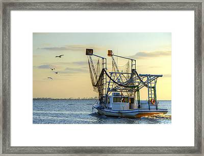Louisiana Shrimping Framed Print