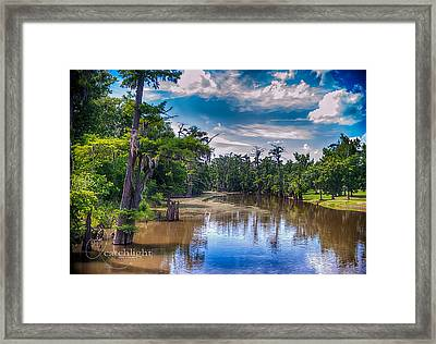 Louisiana Swamp Framed Print by Tammy Smith
