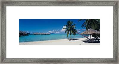 Lounge Chair Under A Beach Umbrella Framed Print