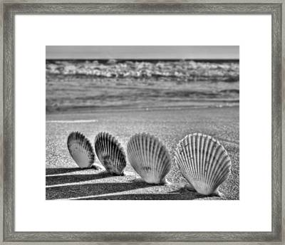 Lounging In Destin Bw Framed Print by JC Findley