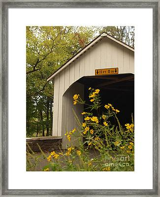 Loux Bridge And Tickseed In September Framed Print by Anna Lisa Yoder