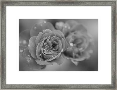 Love At First Sight Framed Print by Miguel Winterpacht