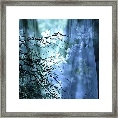 Love Bird's Garden Framed Print