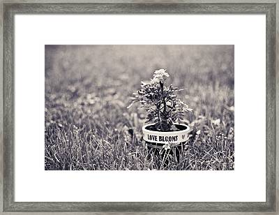 Love Blooms Framed Print by Sara Frank