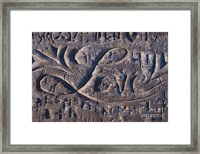 Love Framed Print by Chris Selby