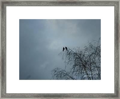 Love Crows Framed Print