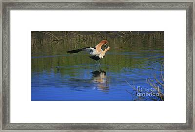 Framed Print featuring the photograph  Courtship Cross by John F Tsumas