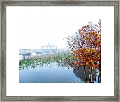Love Framed Print by David Mcchesney