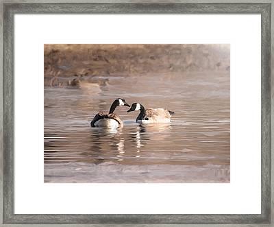 Love Framed Print by Dennis Buckman