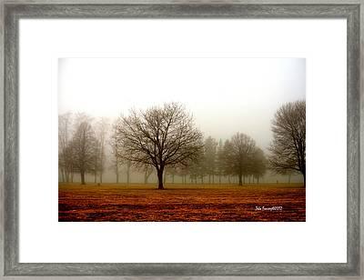 Love Foggy Mornings Framed Print