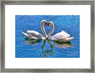 Love For Lauren On Lake Eola By Diana Sainz Framed Print