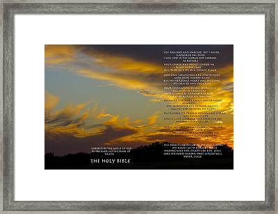 Love From Two Framed Print by David  Norman