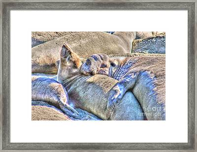 Love Hug - San Simeon California Framed Print