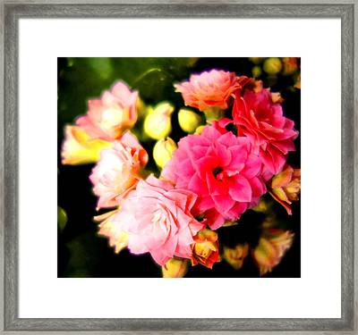 Love Hurts But Who Cares Framed Print
