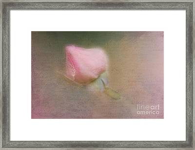 Love In Bloom  Framed Print by A New Focus Photography