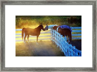 Love In Kentucky Framed Print
