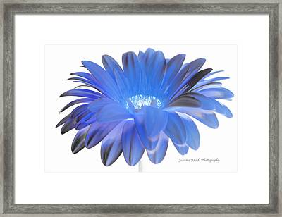 Framed Print featuring the digital art Love Is A Gift by Jeannie Rhode