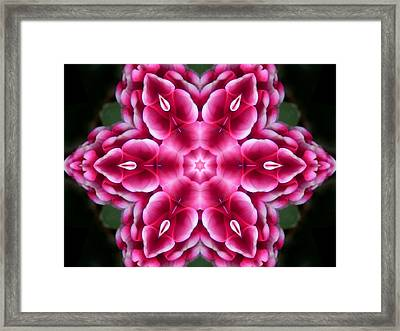 Love Is Divine Mandala Framed Print