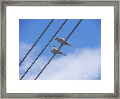 Love Is In The Air Framed Print by Chrisann Ellis