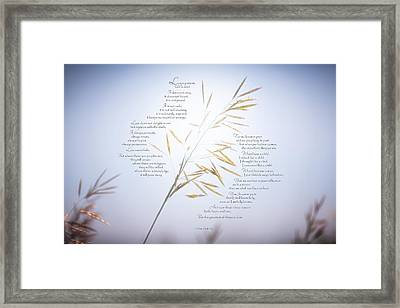 Love Is - Iv Framed Print