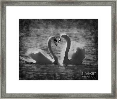 Love Is.. Framed Print