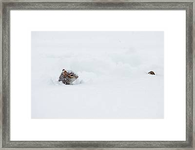 Love Is Snowblind Framed Print