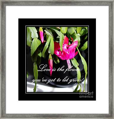 Love Is The Flower You've Got To Let Grow Framed Print by Barbara Griffin