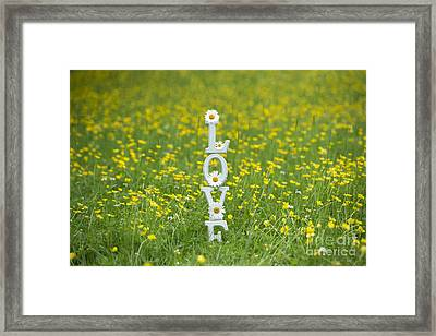 Love Is Framed Print by Tim Gainey