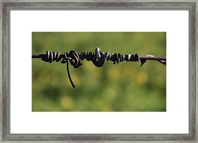 Love Lines 4 Framed Print by Penelope Moore