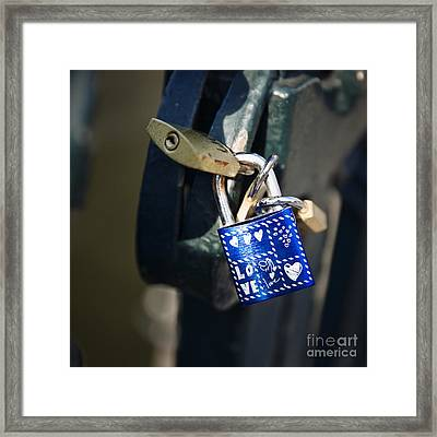 Love Locks Framed Print by Jane Rix